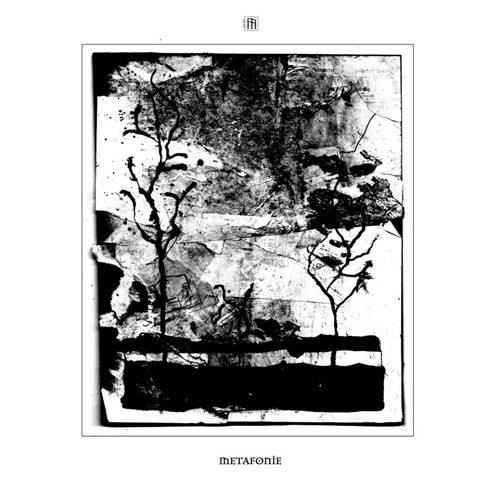 Metafonie (Novembre 2020)